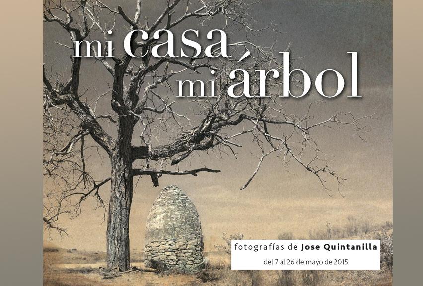 """JOSÉ QUINTANILLA """"Mi casa, mi árbol"""" – Del 7 al 26 de mayo 2015; SALA C"""