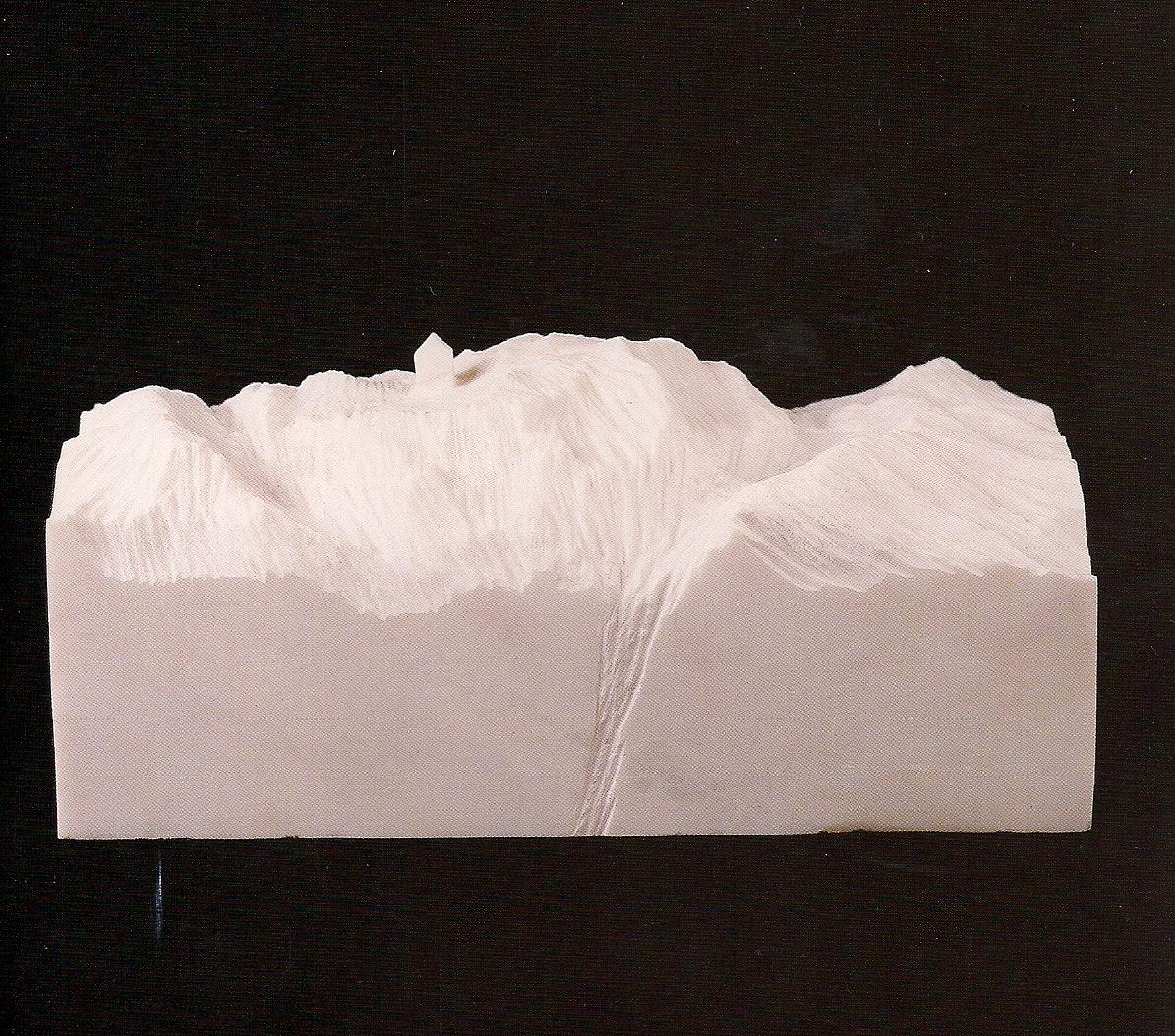 CARMEN BAENA. «Las raíces del aire»
