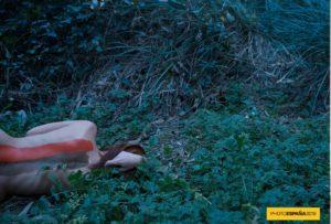 """IRENE CRUZ Y VÍCTOR ALBA """"Symbiosis Naturae"""" SALA C. Del 9 de junio al 3 de julio de 2016  Symbiosis Naturae. El fin es el principio. Los jóvenes artistas […]"""