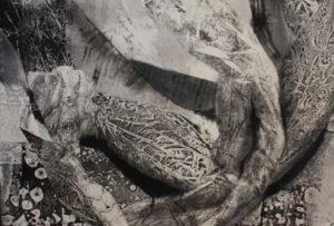 """Sala C.Del 1 al 20 de febrero de 2018. MARÍA ANTONIA FERNÁNDEZ FERNÁNDEZ """"El espacio que habito"""" Mª Antonia Fernández Fernández, Bustio (Asturias) 1960. Licenciada en Bellas Artes por la […]"""