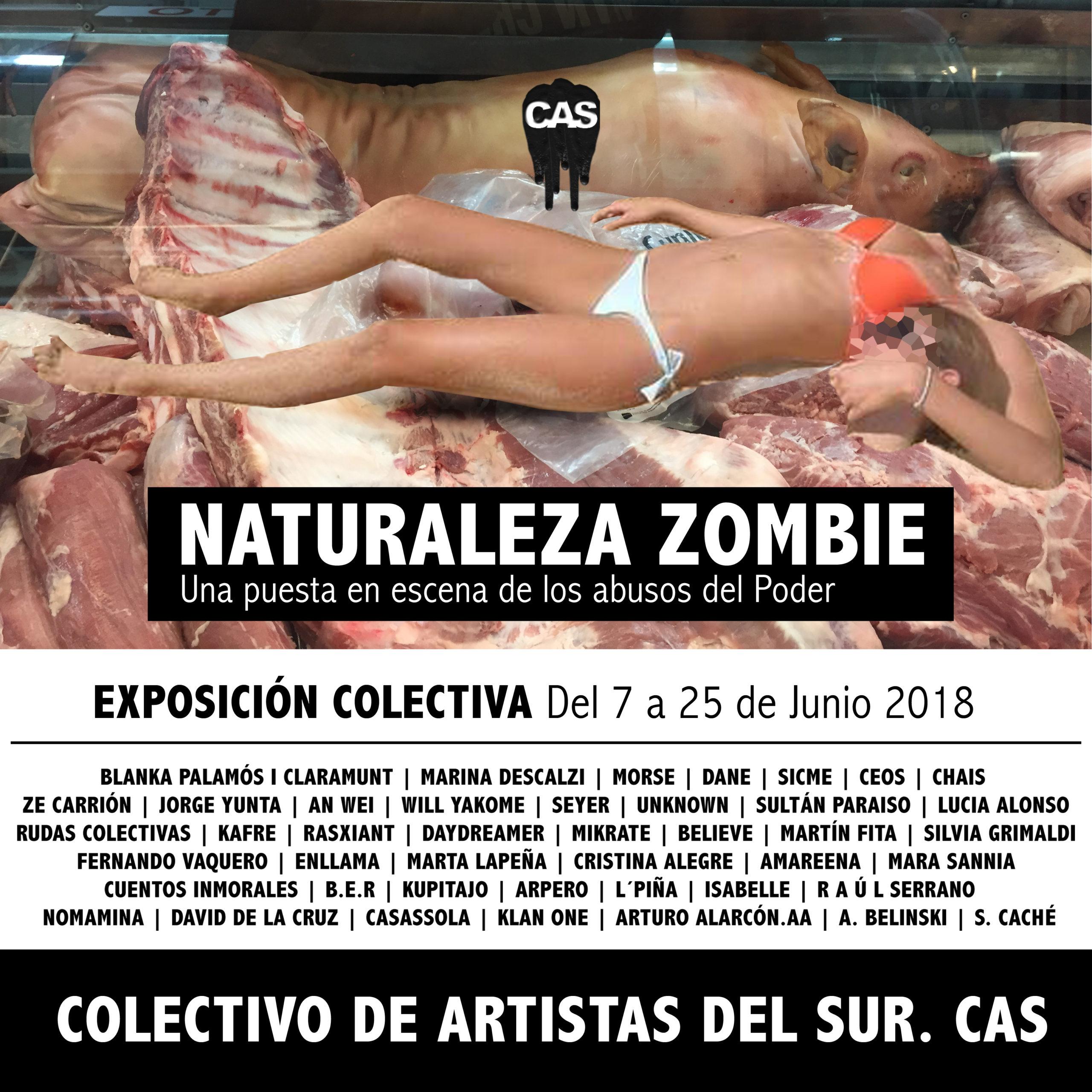 """COLECTIVO DE ARTISTAS DEL SUR  C.A.S """"Naturaleza zombie"""" Del 7 al 26 de junio SALA COLECTIVOS"""