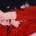 """CRISTINA ALEGRE GALLÉN """" Rostro, prenda, piel"""" Sala C Del 27 de septiembre al 16 de octubre de 2018 Inauguración 27 de septiembre a las 20:00 horas Rostro, prenda y […]"""